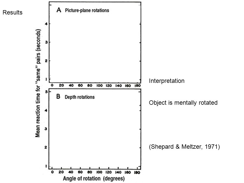 Results Interpretation Object is mentally rotated (Shepard & Meltzer, 1971)