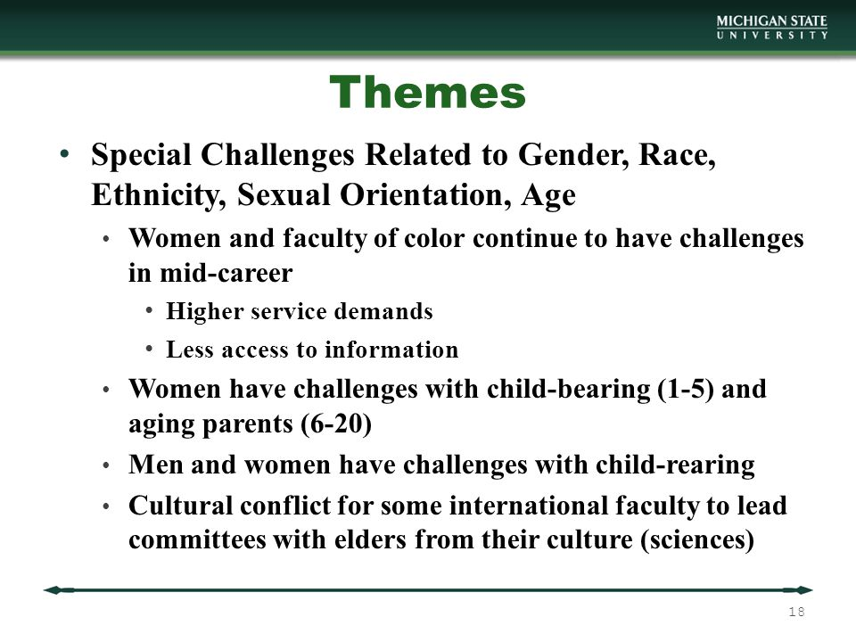 Themes Special Challenges Related to Gender, Race, Ethnicity, Sexual Orientation, Age Women and faculty of color continue to have challenges in mid-career Higher service demands Less access to information Women have challenges with child-bearing (1-5) and aging parents (6-20) Men and women have challenges with child-rearing Cultural conflict for some international faculty to lead committees with elders from their culture (sciences) 18
