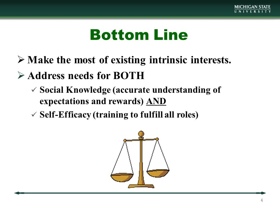 Bottom Line  Make the most of existing intrinsic interests.