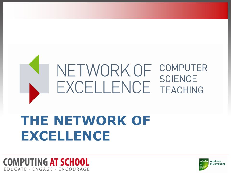 THE NETWORK OF EXCELLENCE