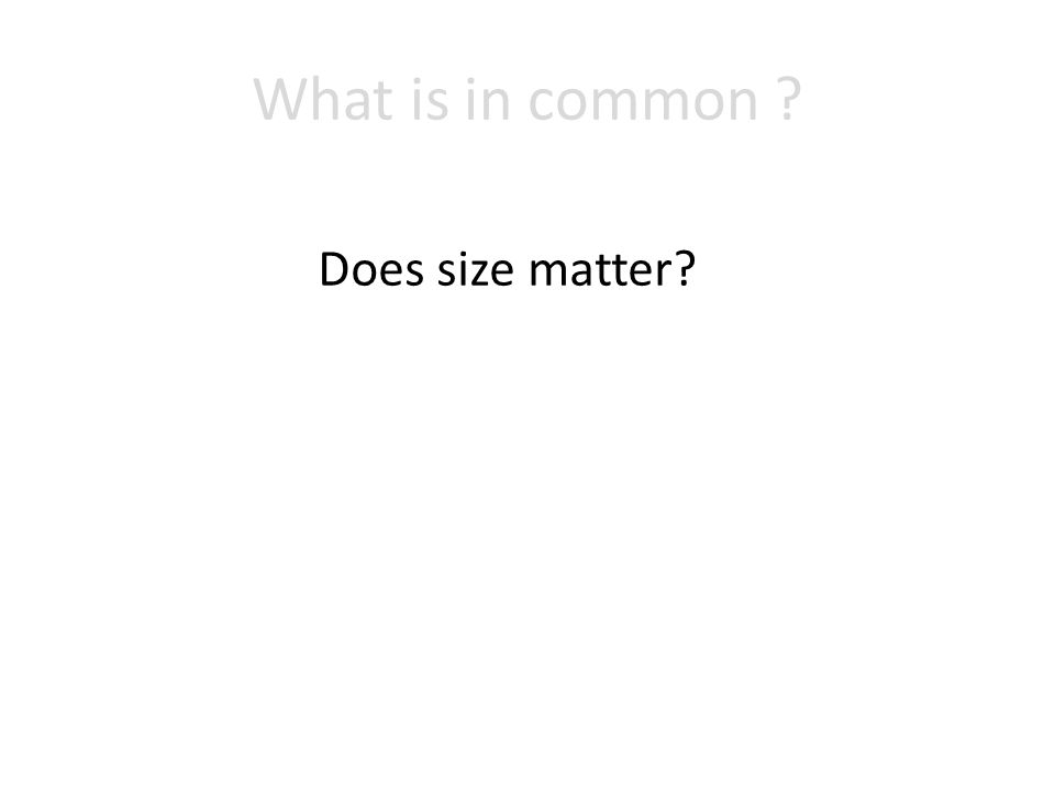 What is in common Does size matter