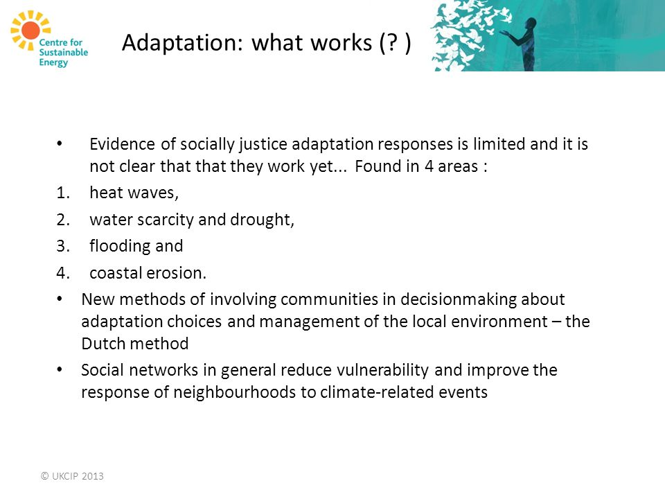 Adaptation: what works (.