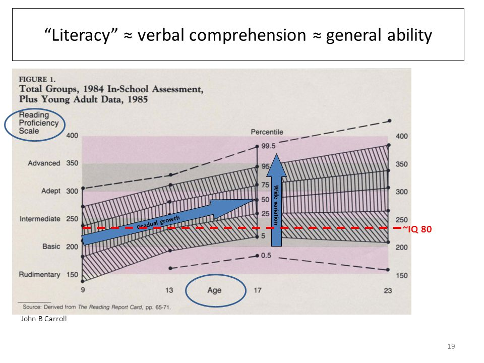 Error rate (%) at mean score Mean score: 2 Literacy level: 3 4 5 Landscape of cognitive risk Cognitive burden Cognitive resources Hi complexity Low literacy Cognitive risk 18 Could teach these individual items, but not all such tasks in daily life.