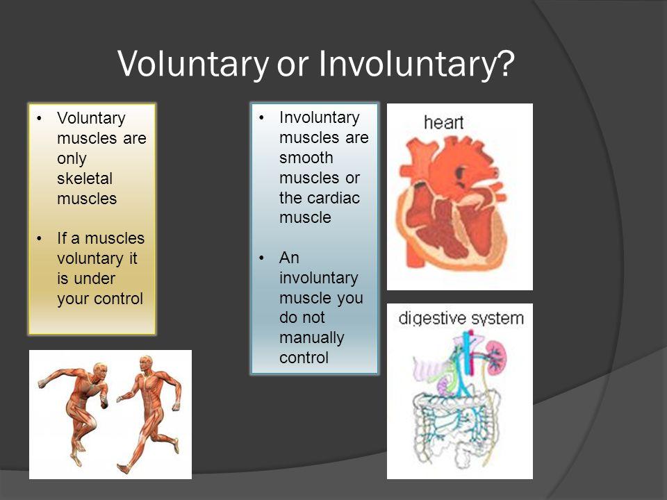 Voluntary or Involuntary.