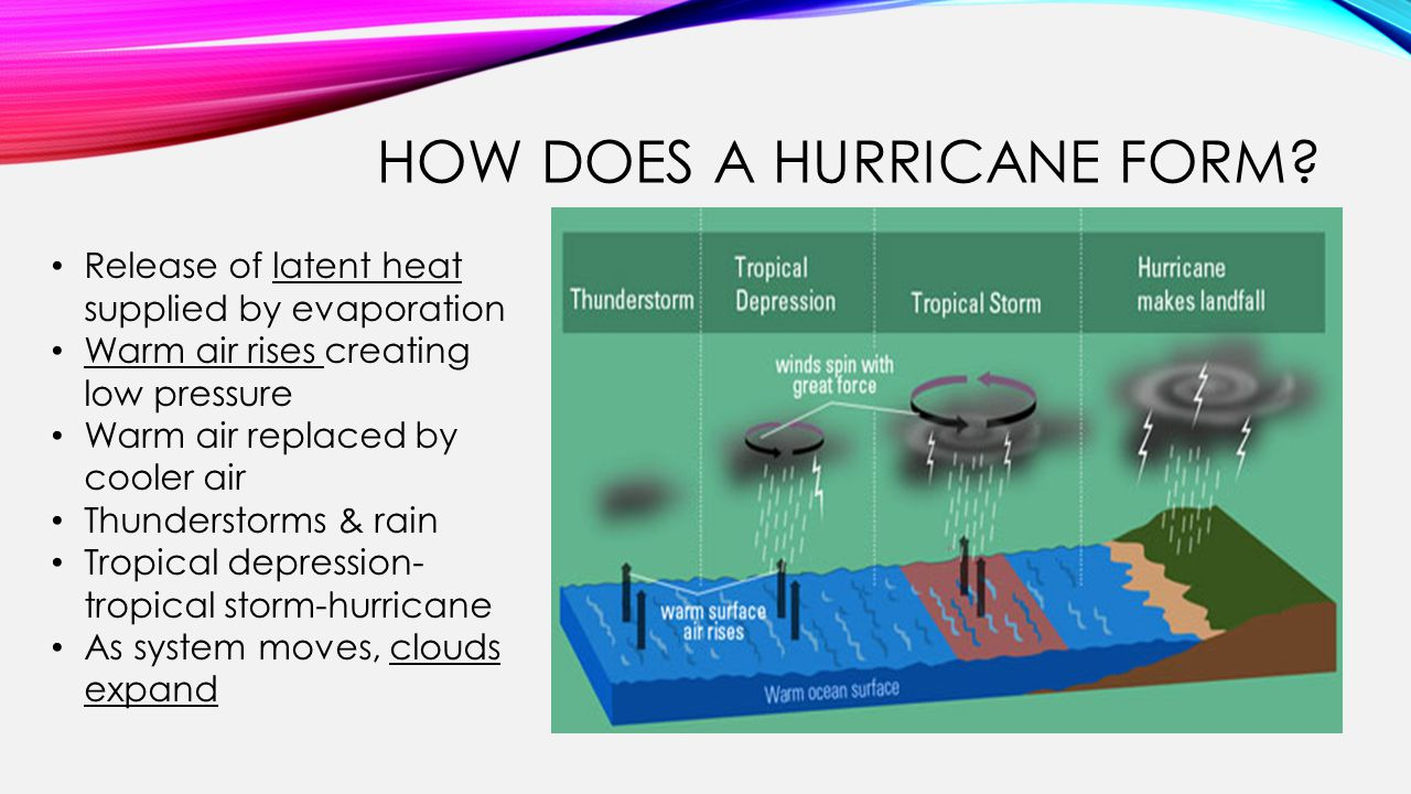 HOW DOES A HURRICANE FORM.
