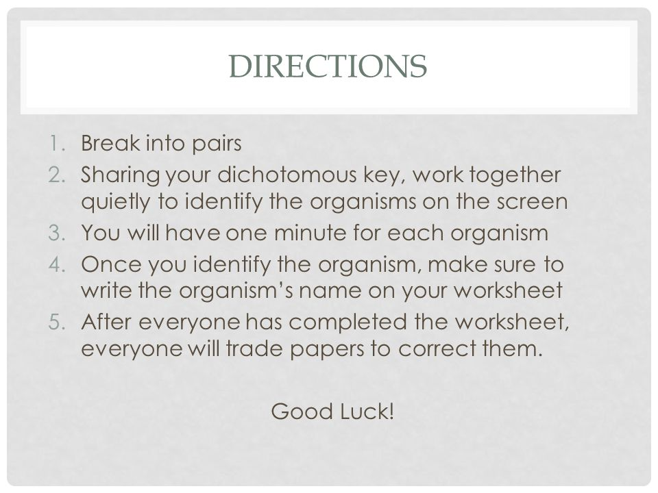 DIRECTIONS 1.Break into pairs 2.Sharing your dichotomous key, work together quietly to identify the organisms on the screen 3.You will have one minute for each organism 4.Once you identify the organism, make sure to write the organism's name on your worksheet 5.After everyone has completed the worksheet, everyone will trade papers to correct them.