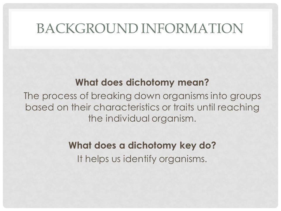 BACKGROUND INFORMATION What does dichotomy mean? The process of breaking down organisms into groups based on their characteristics or traits until rea