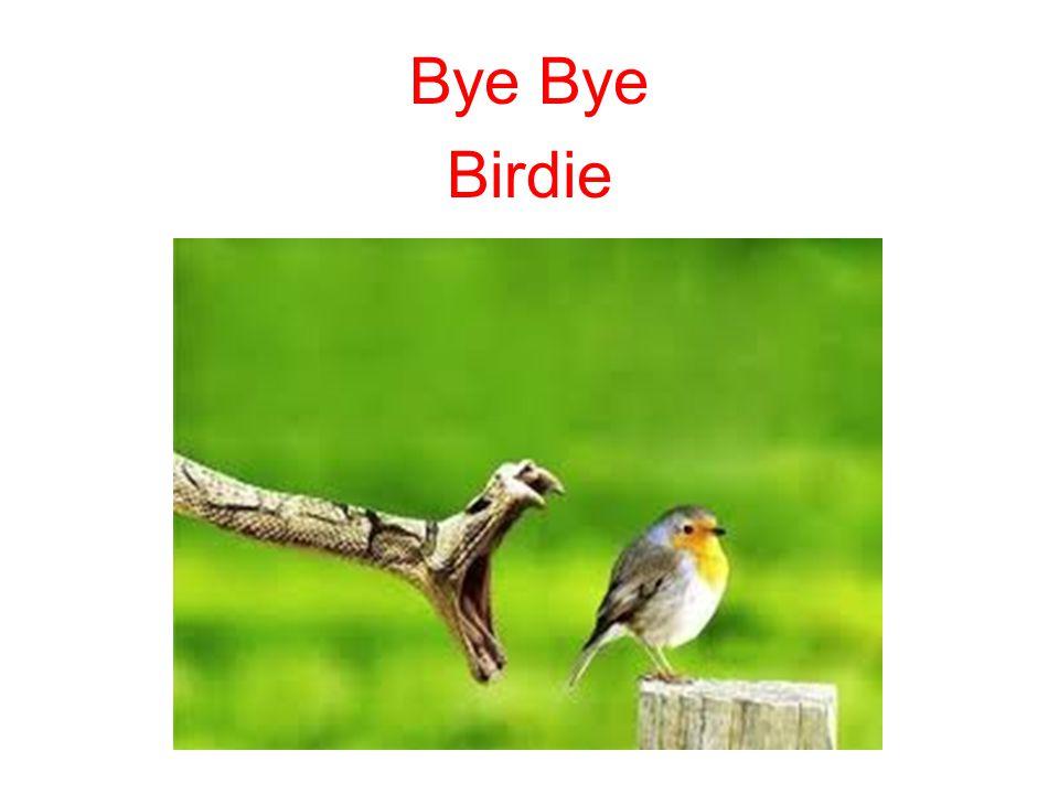 Bye Birdie