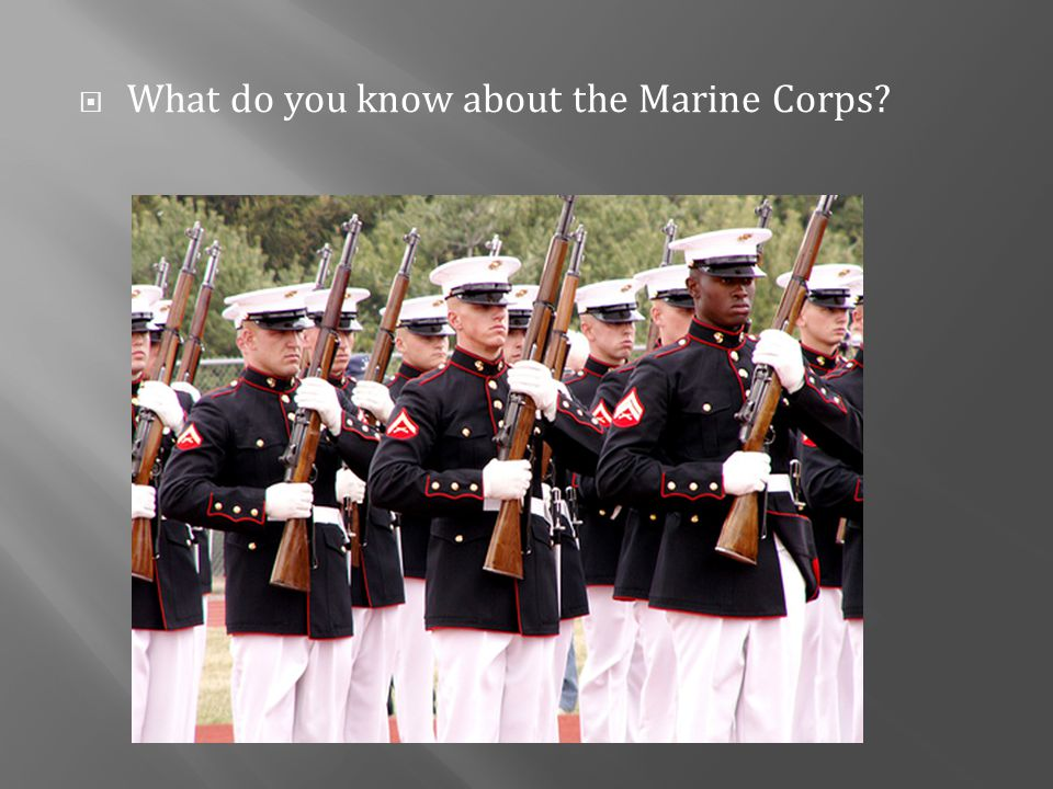  What do you know about the Marine Corps