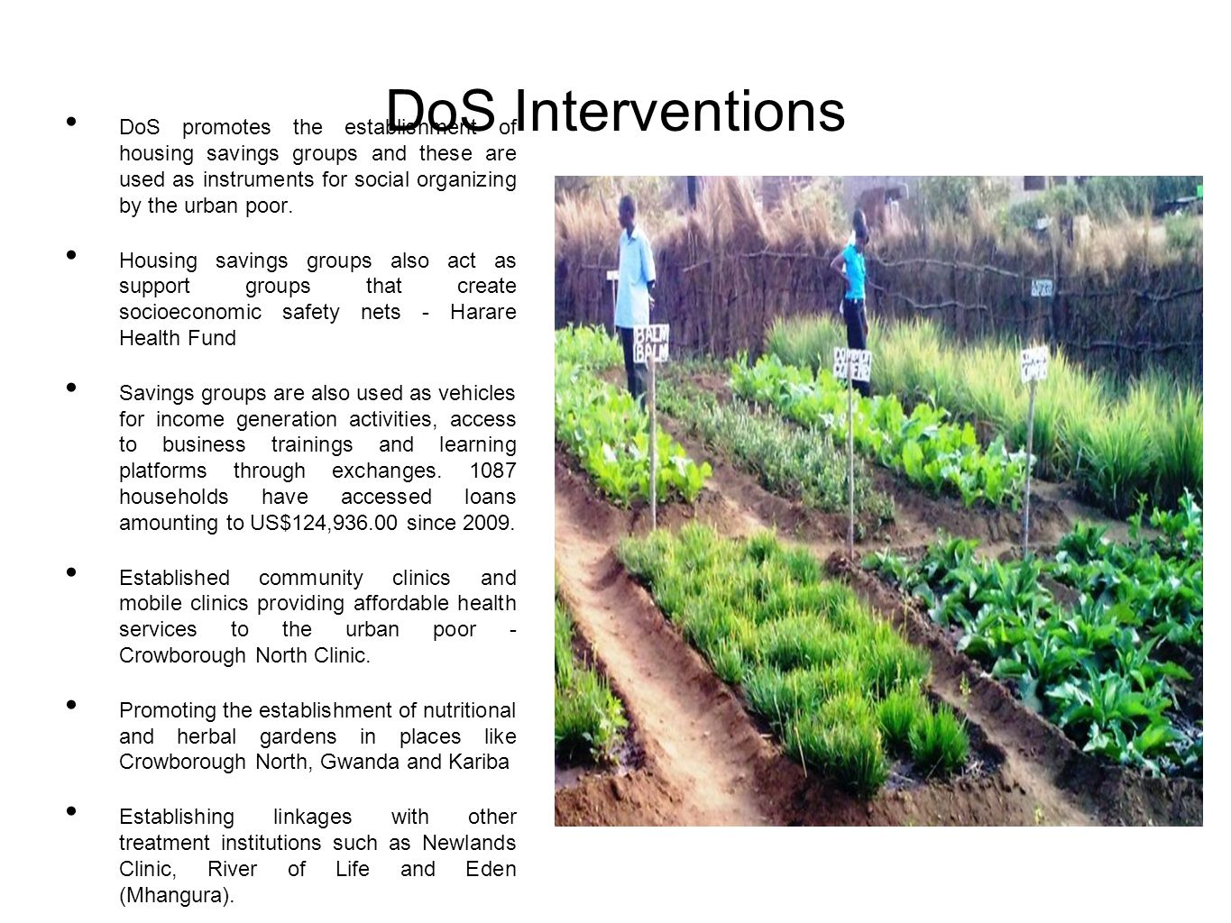 DoS Interventions DoS promotes the establishment of housing savings groups and these are used as instruments for social organizing by the urban poor.