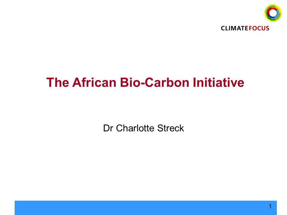 1 The African Bio-Carbon Initiative Dr Charlotte Streck
