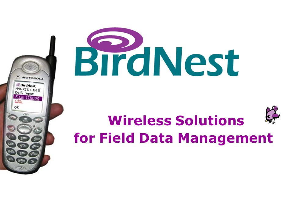 BirdNest Services Wireless Solutions for Field Data Management
