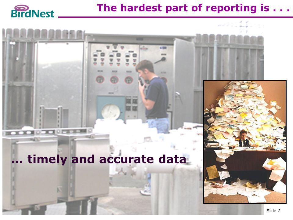 Copyright © BirdNest Services, Inc., 2005 Slide 13 History