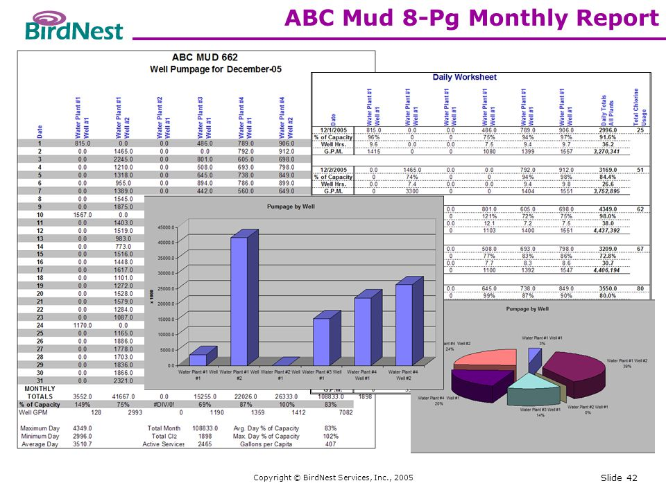 Copyright © BirdNest Services, Inc., 2005 Slide 42 ABC Mud 8-Pg Monthly Report