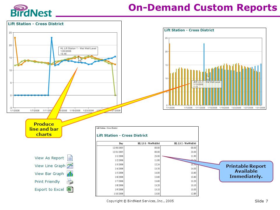 Copyright © BirdNest Services, Inc., 2005 Slide 7 On-Demand Custom Reports Produce line and bar charts Printable Report Available Immediately.