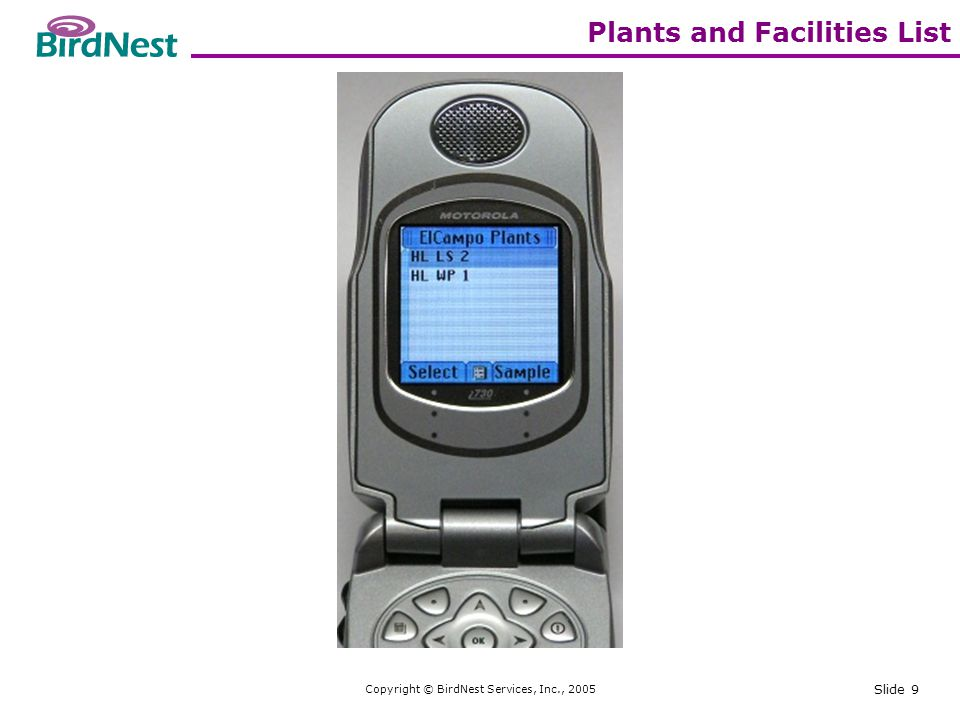 Copyright © BirdNest Services, Inc., 2005 Slide 10 Elements list