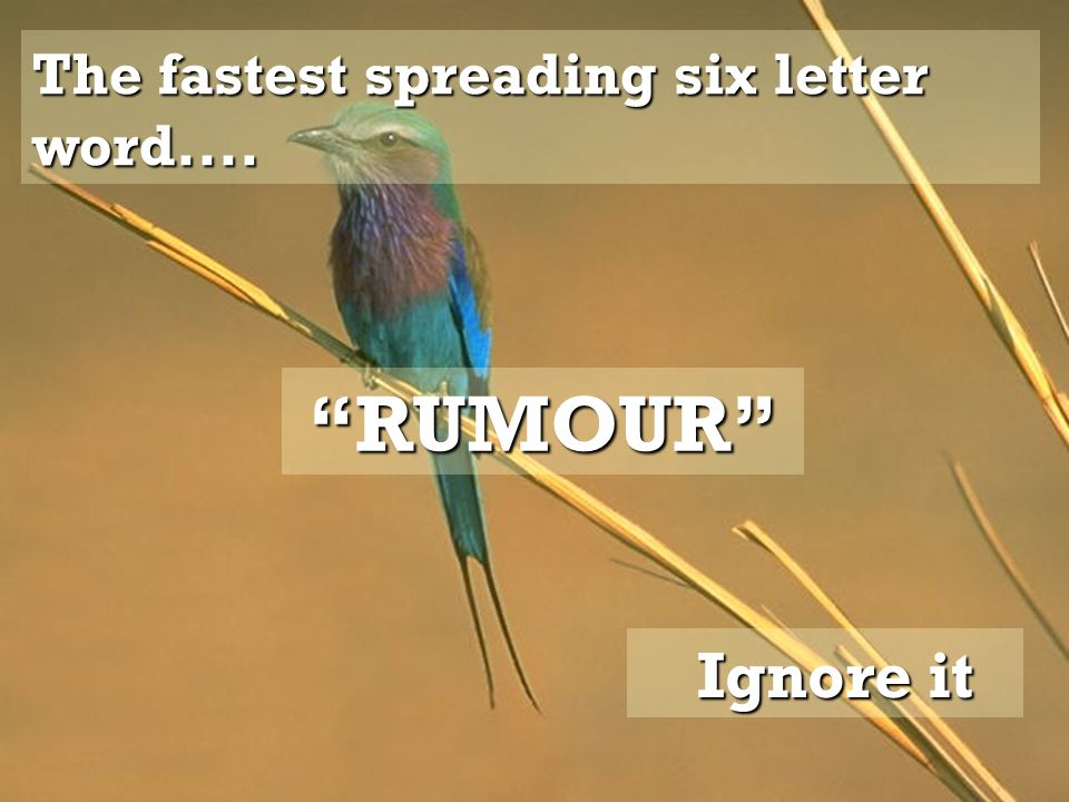 The fastest spreading six letter word.... RUMOUR Ignore it Ignore it