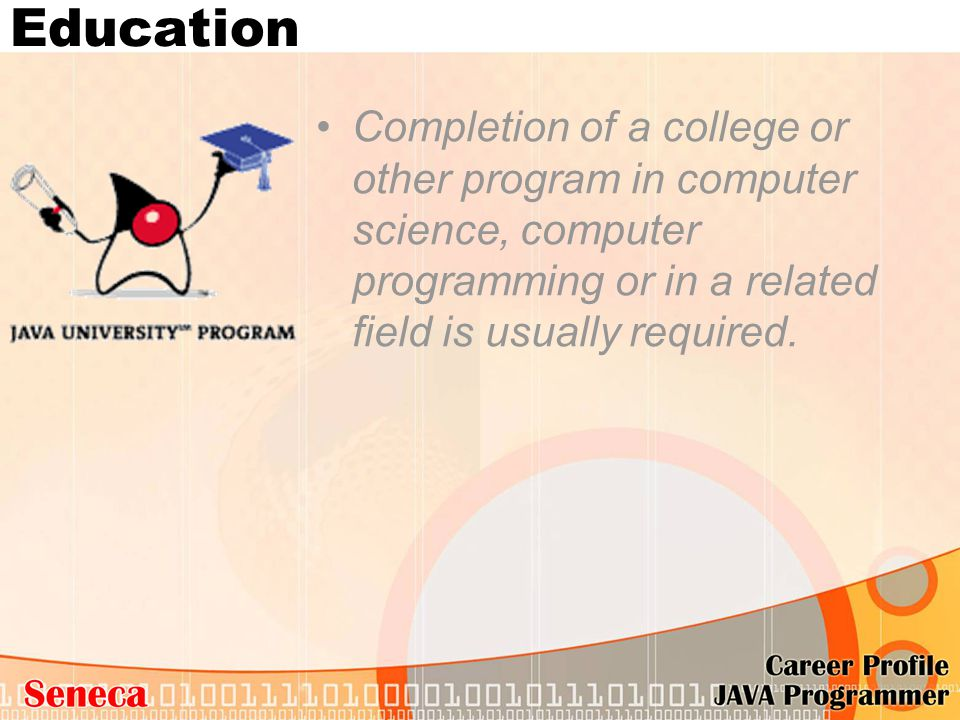 Education Completion of a college or other program in computer science, computer programming or in a related field is usually required.
