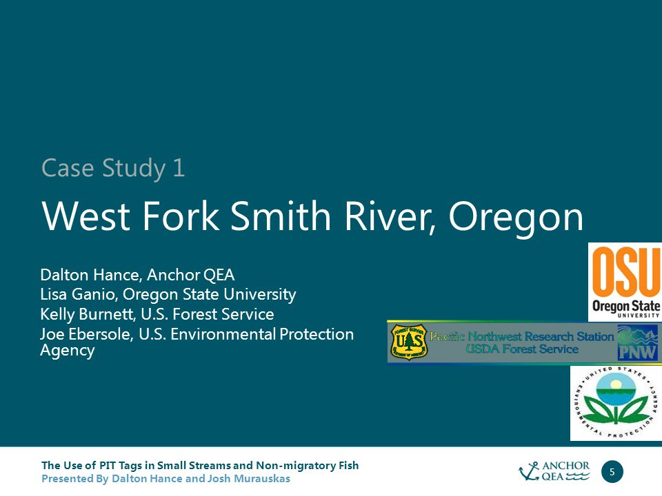 The Use of PIT Tags in Small Streams and Non-migratory Fish Presented By Dalton Hance and Josh Murauskas 6 Juvenile coho salmon tagged in late summer over 4 years.