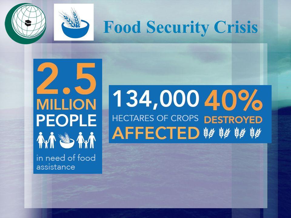 Food Security Crisis