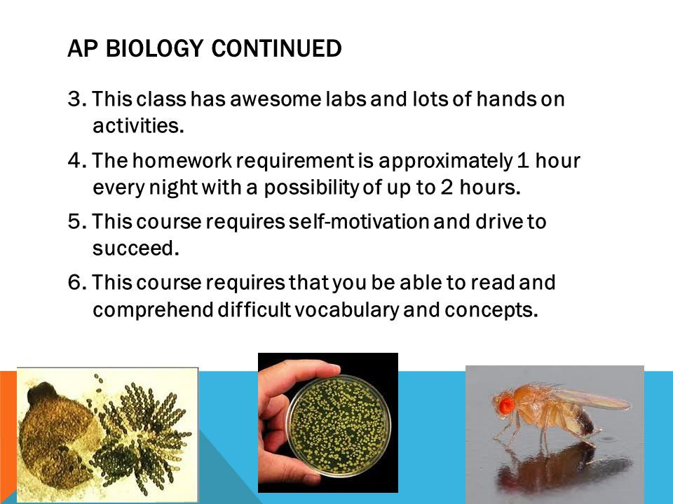 AP BIOLOGY CONTINUED 3. This class has awesome labs and lots of hands on activities. 4. The homework requirement is approximately 1 hour every night w