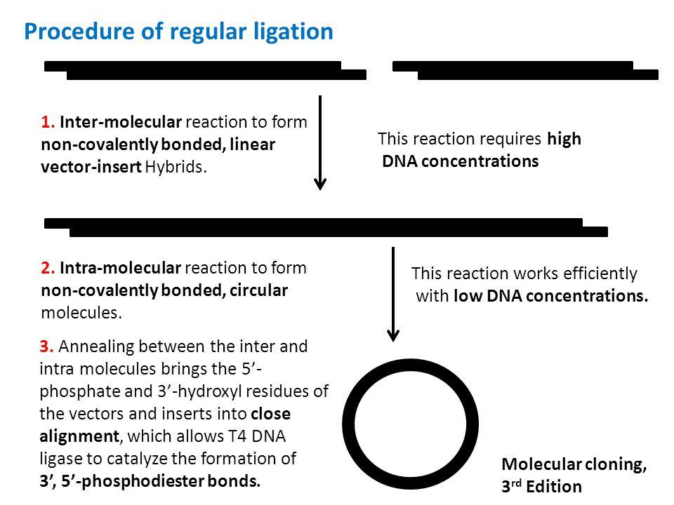 Procedure of regular ligation 1.