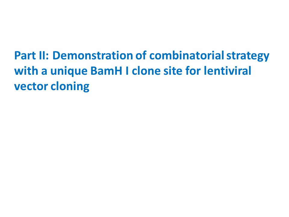 Part II: Demonstration of combinatorial strategy with a unique BamH I clone site for lentiviral vector cloning
