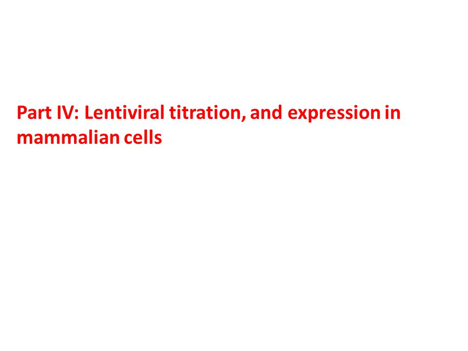 Part IV: Lentiviral titration, and expression in mammalian cells