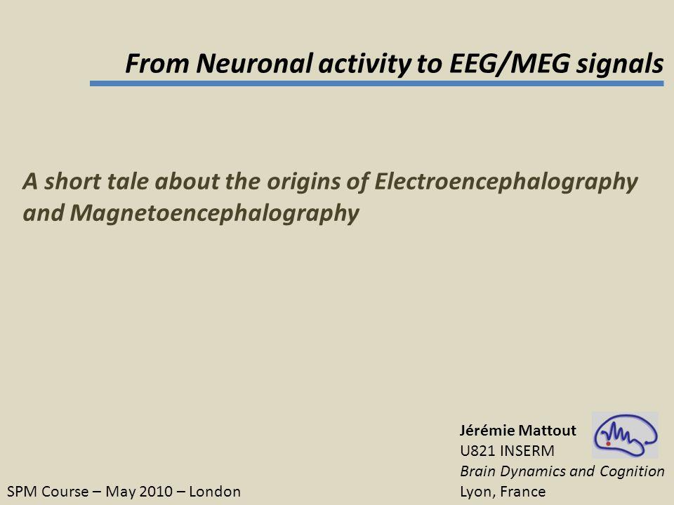 A brief history The EEG & MEG instrumentation What do we measure with EEG & MEG .