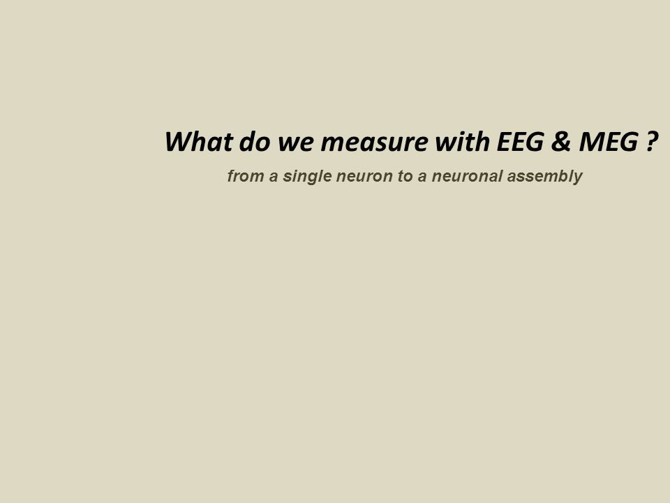What do we measure with EEG & MEG ? from a single neuron to a neuronal assembly