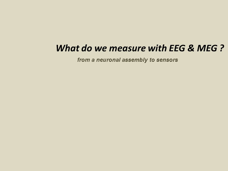 What do we measure with EEG & MEG ? from a neuronal assembly to sensors