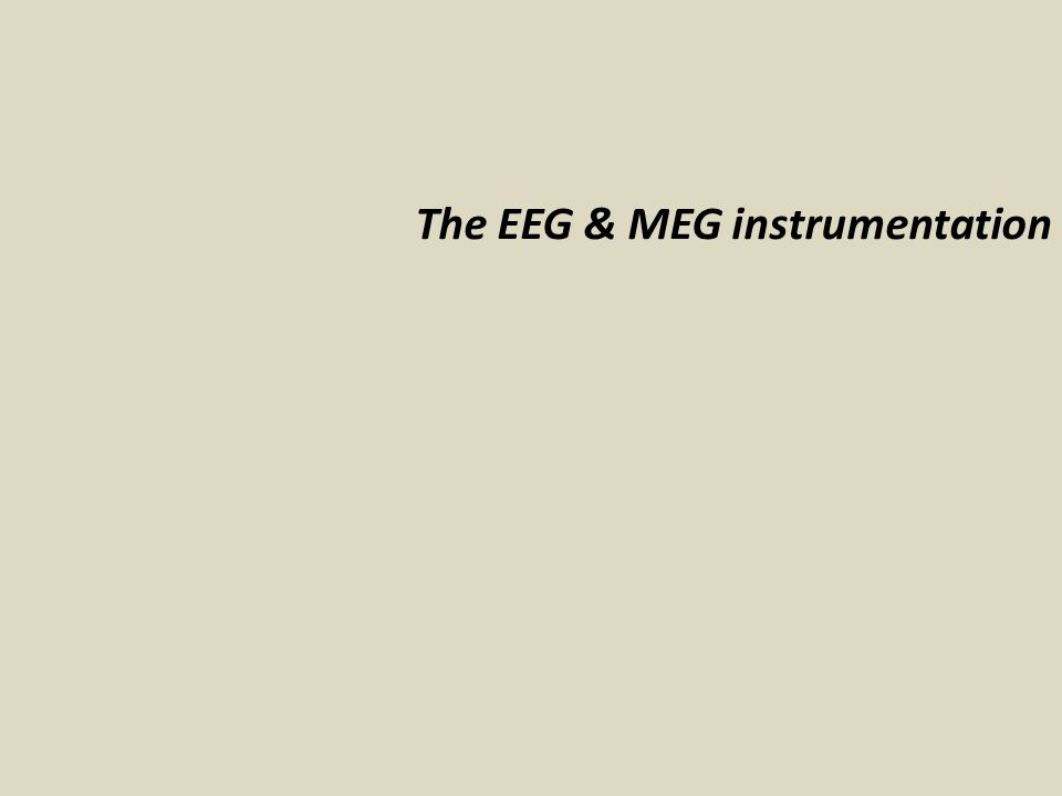From a single source to the sensor: EEG What do we measure with EEG & MEG .