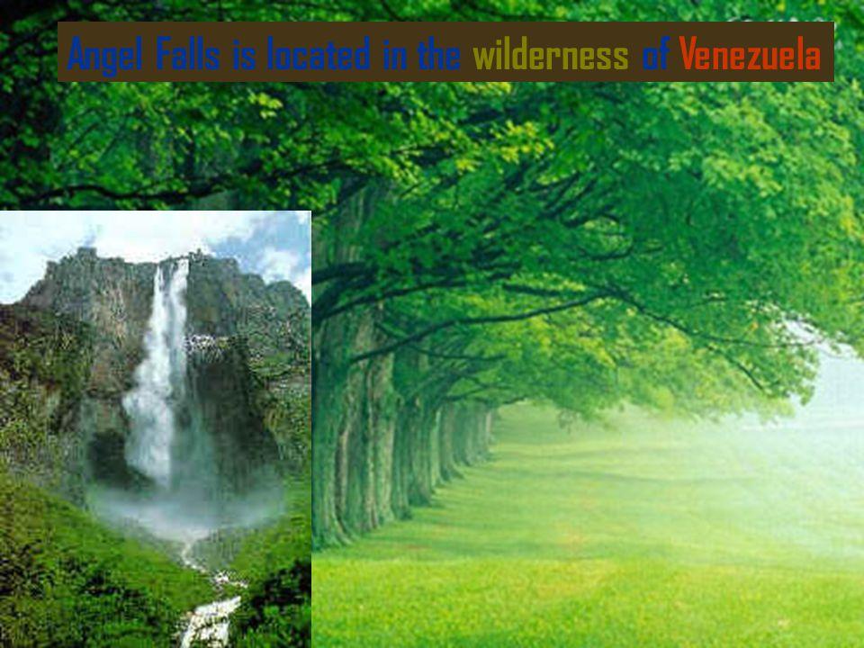 Angel Falls is located in the wilderness of Venezuela