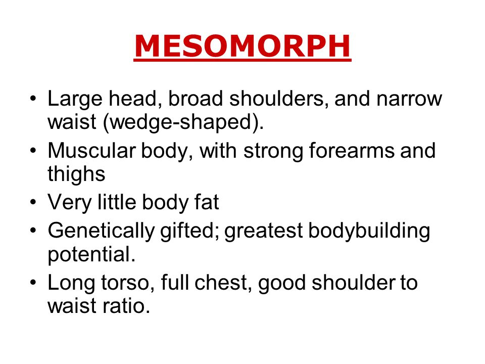 MESOMORPH Large head, broad shoulders, and narrow waist (wedge-shaped).