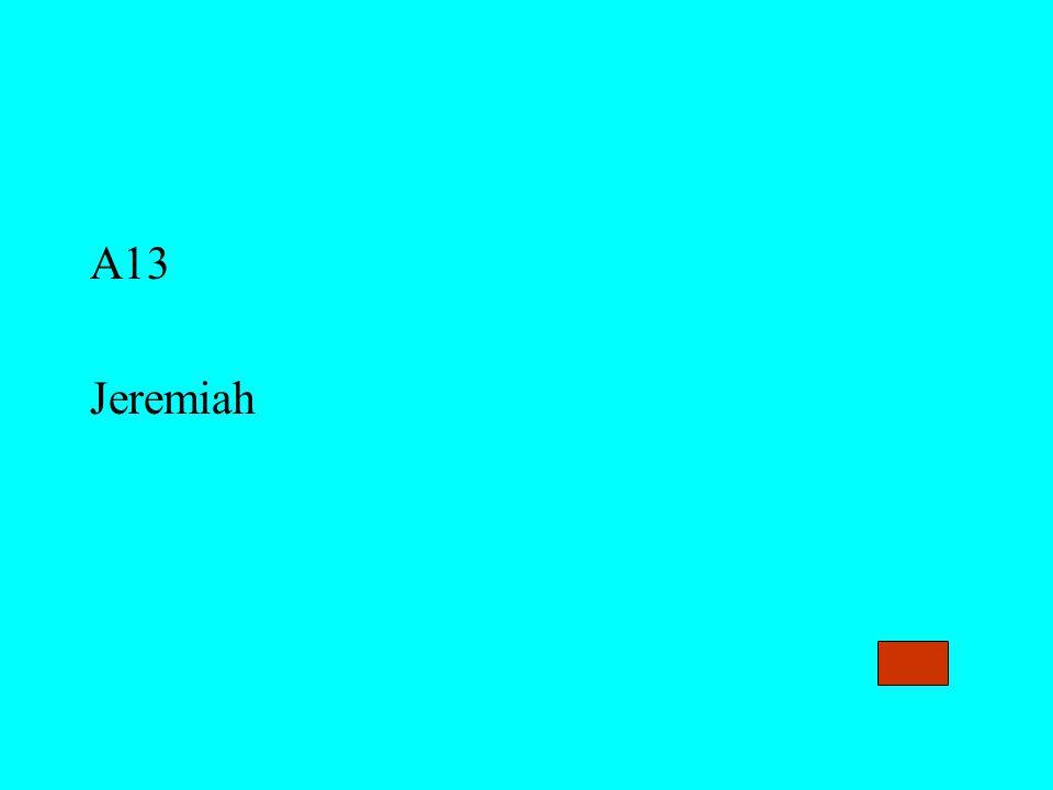 A13 Jeremiah