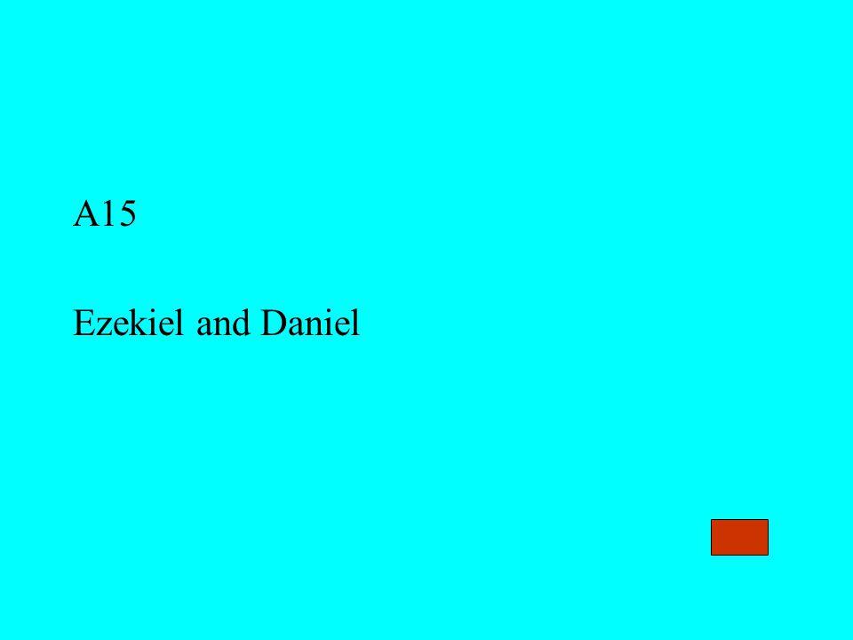 A15 Ezekiel and Daniel