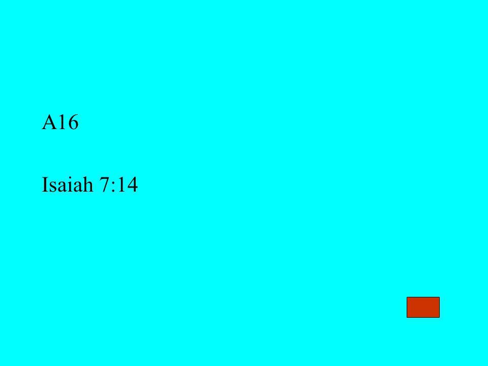 A16 Isaiah 7:14