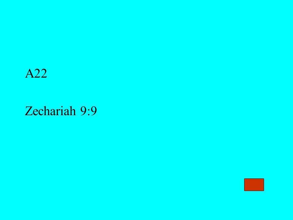 A22 Zechariah 9:9