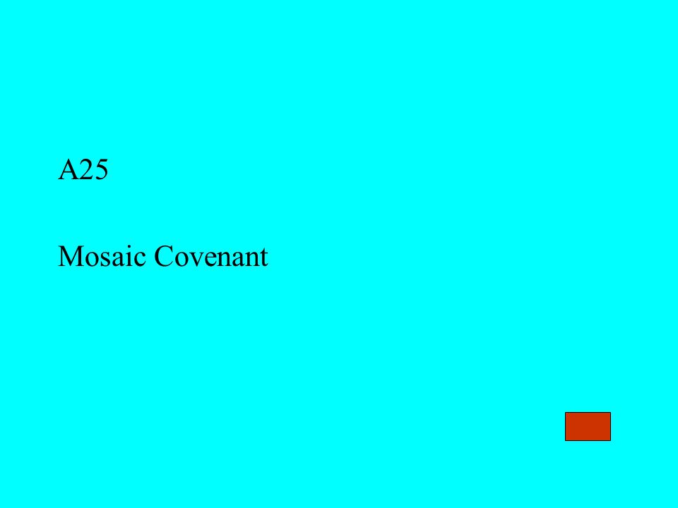 A25 Mosaic Covenant