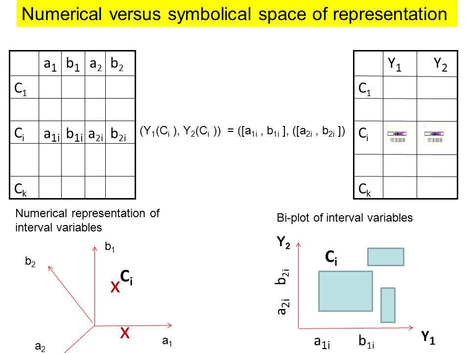 Y2Y2 Y1Y1 CiCi CkCk C1C1 (Y 1 (C i ), Y 2 (C i )) = ([a 1i, b 1i ], ([a 2i, b 2i ]) Y1Y1 Y2Y2 x x a1a1 b1b1 b2b2 a2a2 CiCi x CiCi a2a2 a1a1 CiCi CkCk