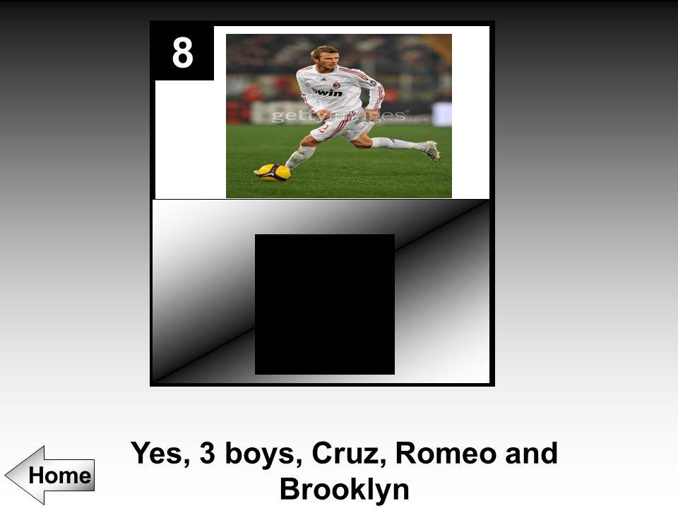 8 Yes, 3 boys, Cruz, Romeo and Brooklyn