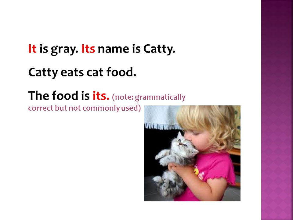 It is gray. Its name is Catty. Catty eats cat food.
