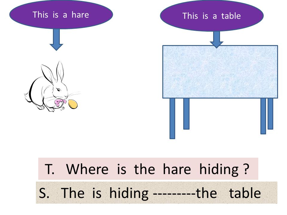 T. Where is the hare hiding ? This is a hare This is a table S. The is hiding ---------the table