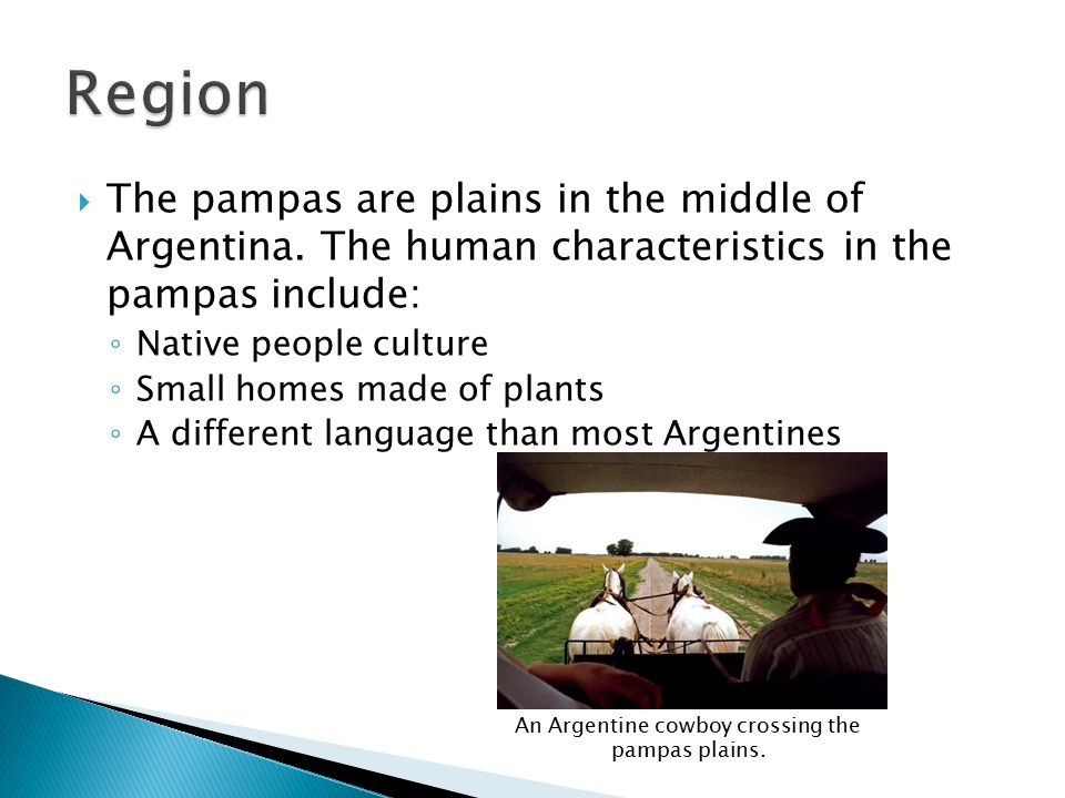  The pampas are plains in the middle of Argentina.