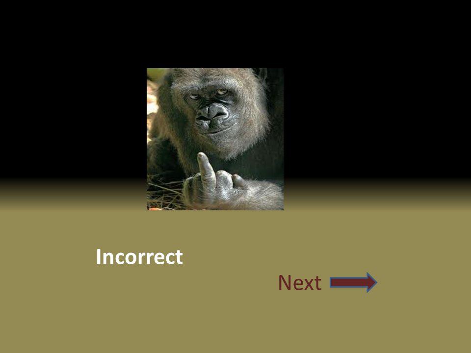 Incorrect Next