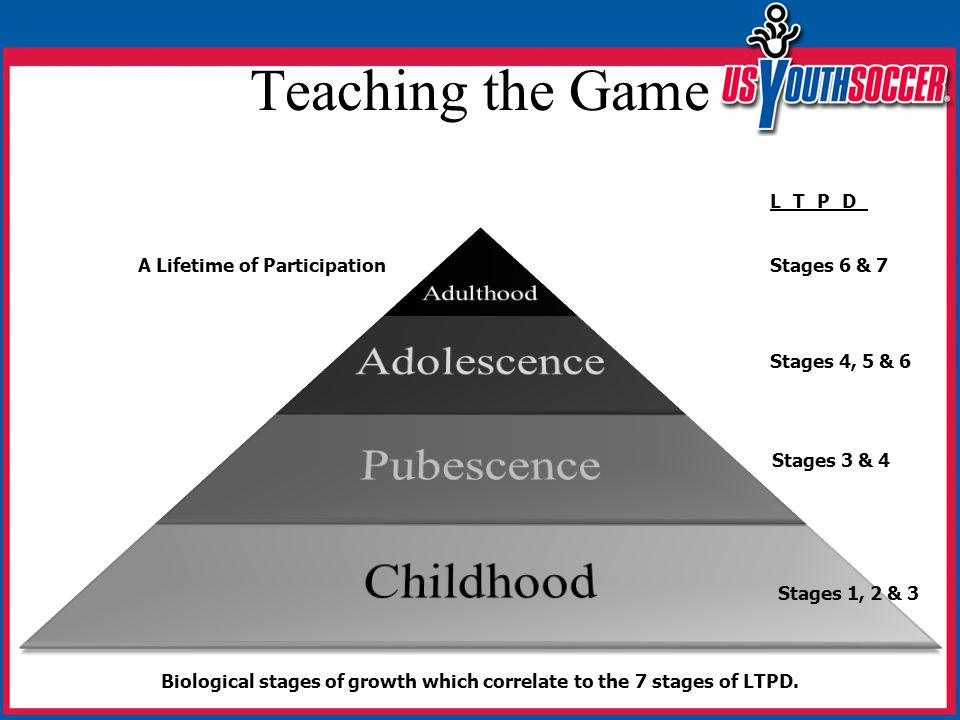 Teaching the Game A Lifetime of Participation Biological stages of growth which correlate to the 7 stages of LTPD.