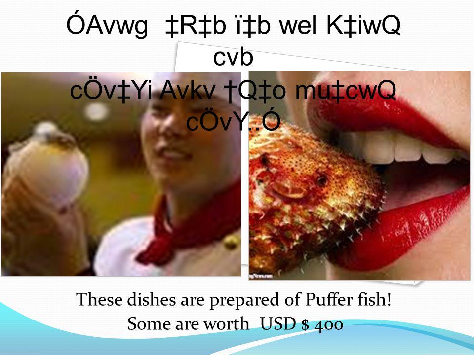 These dishes are prepared of Puffer fish! Some are worth USD $ 400 ÓAvwg ‡R‡b ï‡b wel K‡iwQ cvb cÖv‡Yi Avkv †Q‡o mu‡cwQ cÖvY..Ó