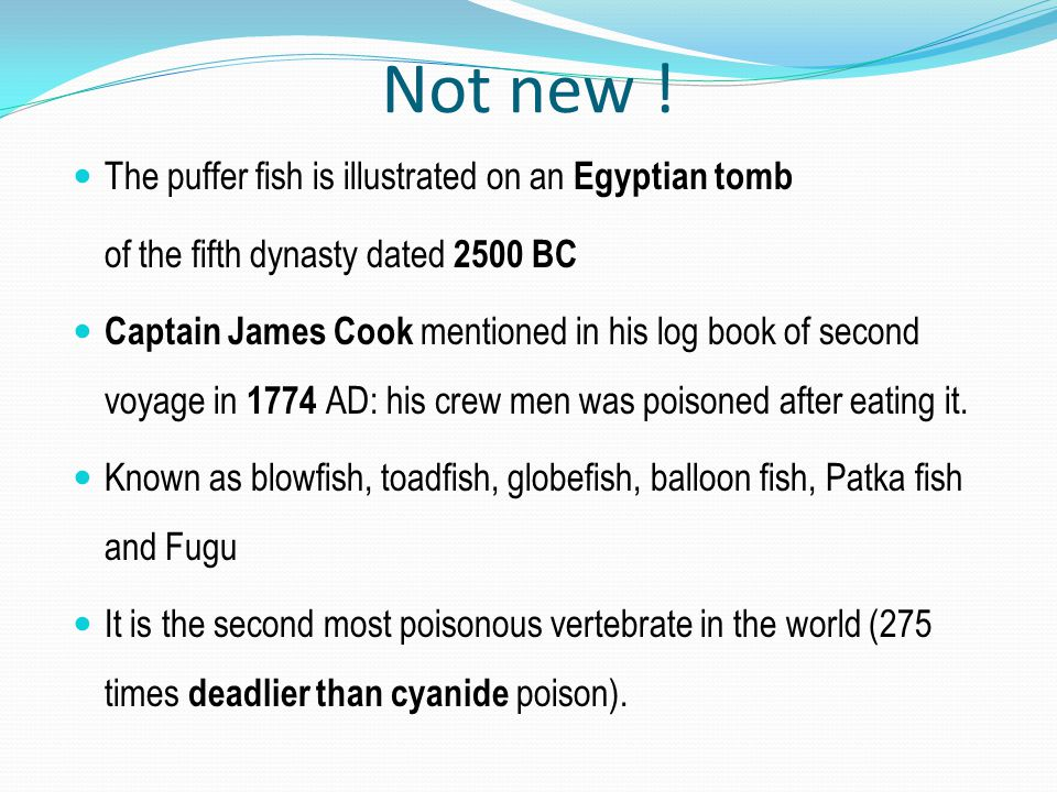 Not new ! The puffer fish is illustrated on an Egyptian tomb of the fifth dynasty dated 2500 BC Captain James Cook mentioned in his log book of second