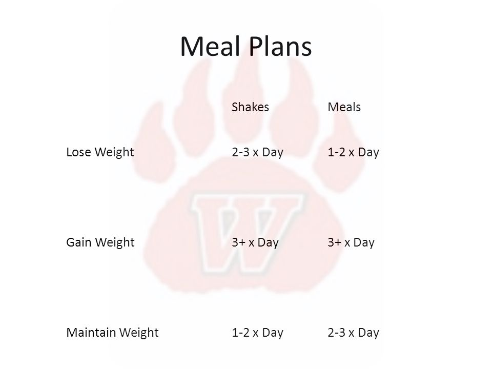 Meal Plans ShakesMeals Lose Weight2-3 x Day1-2 x Day Gain Weight3+ x Day Maintain Weight1-2 x Day2-3 x Day