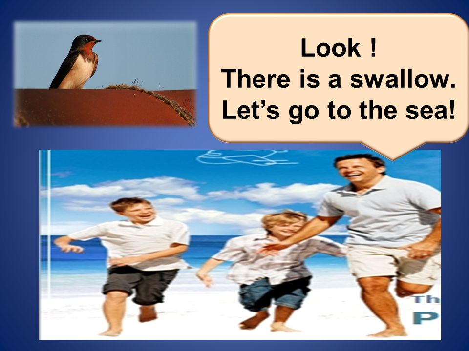 Look ! There is a swallow. Let's go to the sea!
